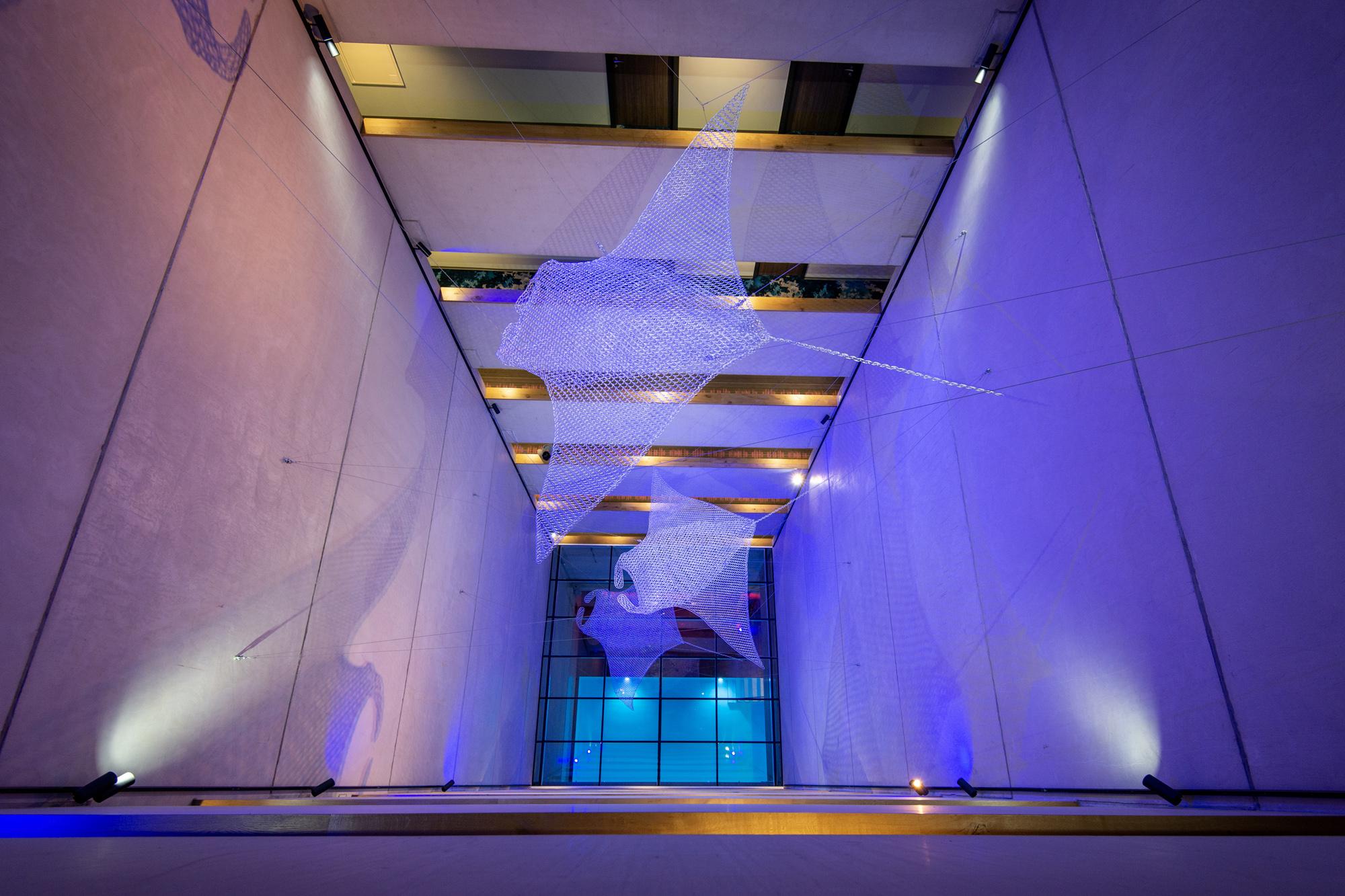 Der eingebaute Veltmann Custom Pool, folglich ein Bild des Schwimmbeckens aus dem Atrium